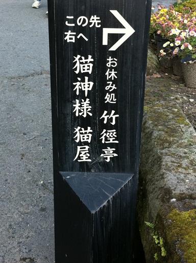 20101123猫神社01