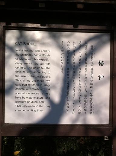 20101123猫神社06