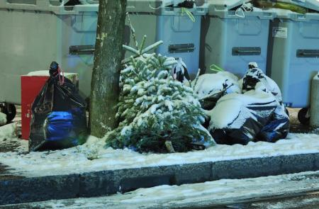 Christmas tree_5