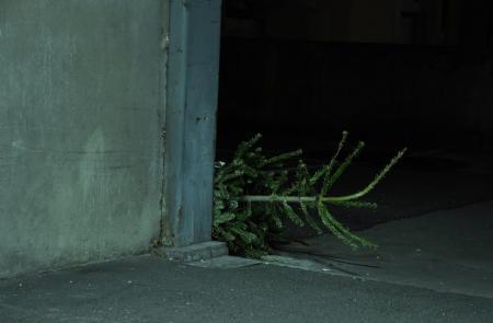 Christmas tree_3