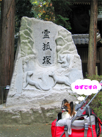 yuzu091031-1.jpg