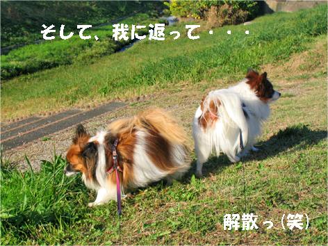 yuzukota091103-2.jpg