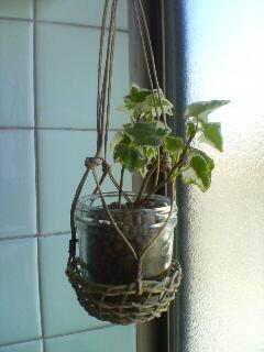 観葉植物入れ