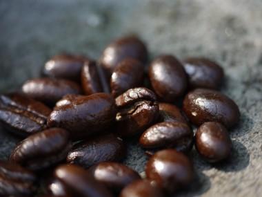 P1050069_oyacoffee.JPG