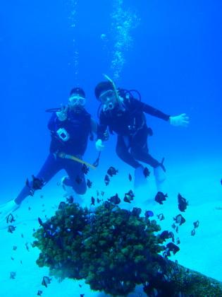 カケロマ 体験ダイビング
