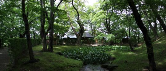 20090814_kubota_castle-30.jpg