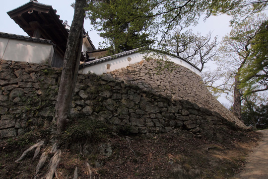 20110430_bicchu_matsuyama_castle-100.jpg