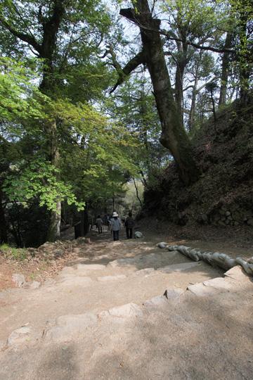 20110430_bicchu_matsuyama_castle-110.jpg