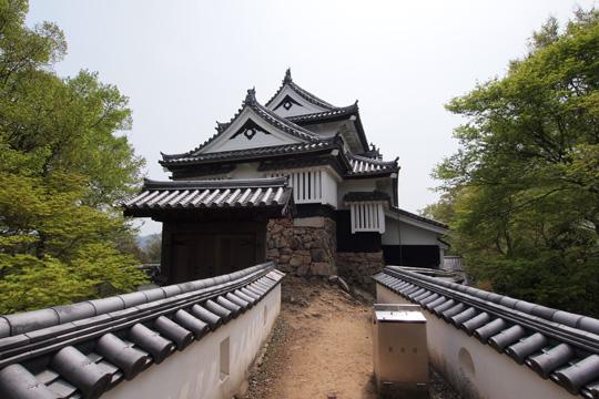 20110430_bicchu_matsuyama_castle-98.jpg