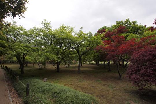20110501_korakuen-67.jpg