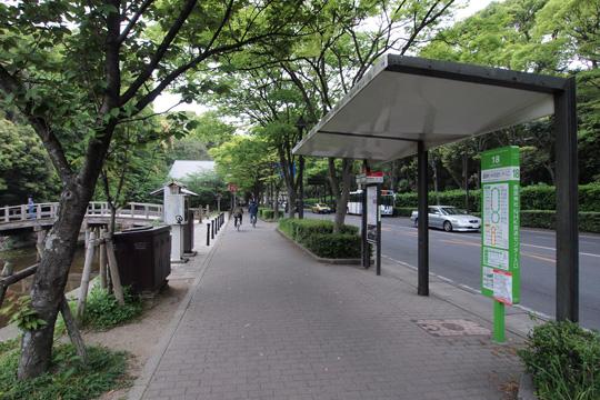 20110503_fukuoka_castle-10.jpg