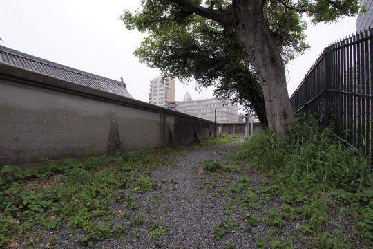 20110503_fukuoka_castle-106.jpg