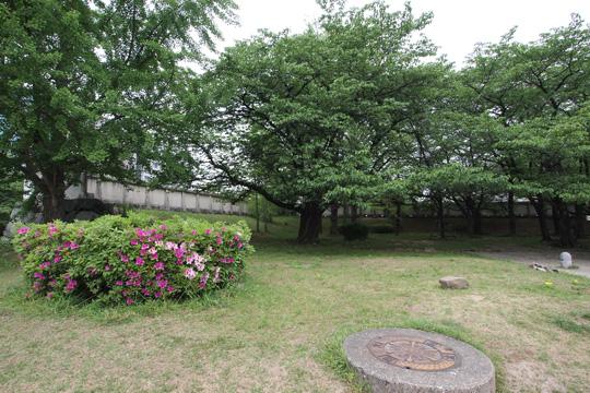 20110503_fukuoka_castle-117.jpg