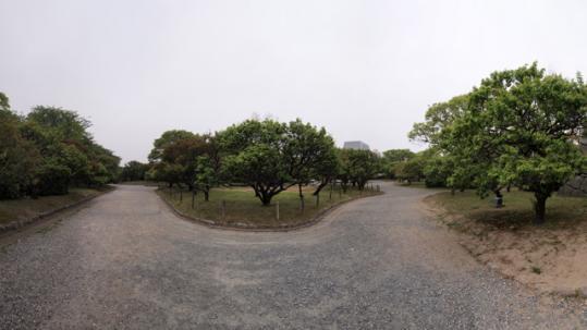20110503_fukuoka_castle-38.jpg