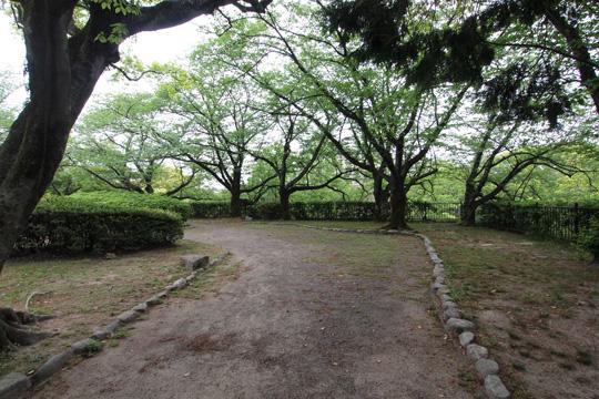 20110503_fukuoka_castle-52.jpg