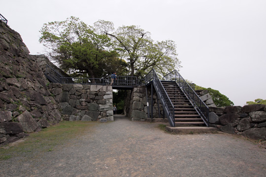 20110503_fukuoka_castle-58.jpg