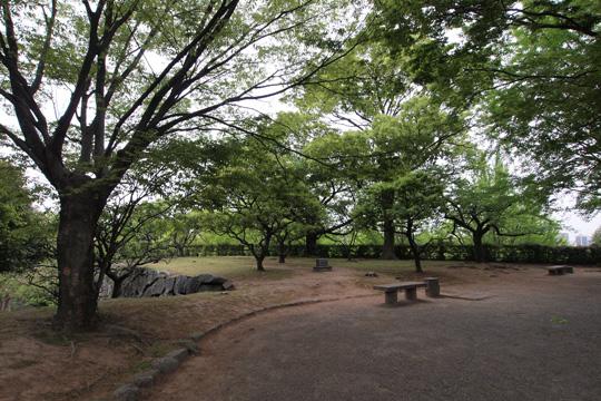 20110503_fukuoka_castle-68.jpg