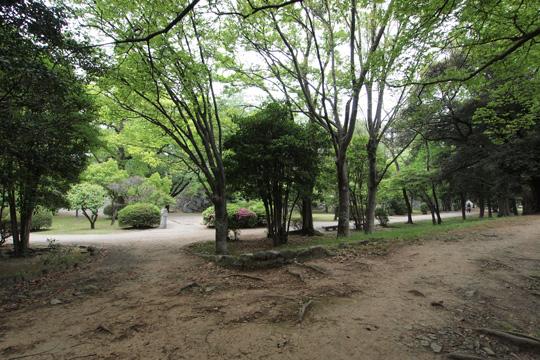 20110503_fukuoka_castle-87.jpg