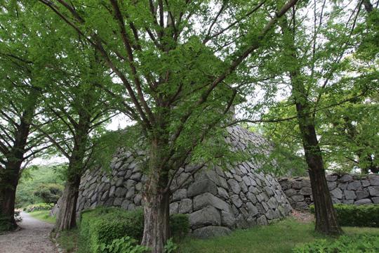 20110503_fukuoka_castle-90.jpg