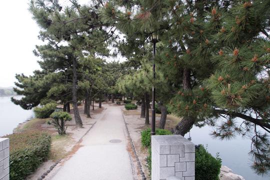 20110503_ohori_park-14.jpg