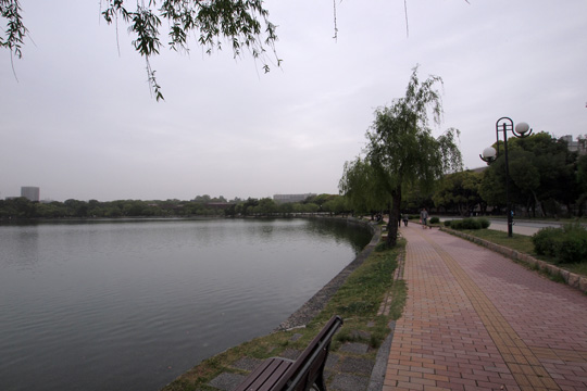 20110503_ohori_park-24.jpg