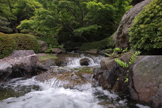 20110503_ohori_park-38.jpg