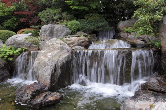 20110503_ohori_park-40.jpg