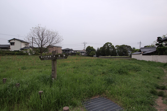 20110504_dazaifu-37.jpg