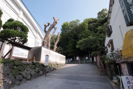 20110505_karatsu_castle-12.jpg