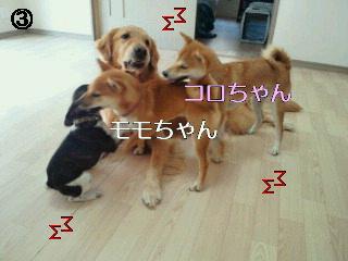 2010100615440000.jpg