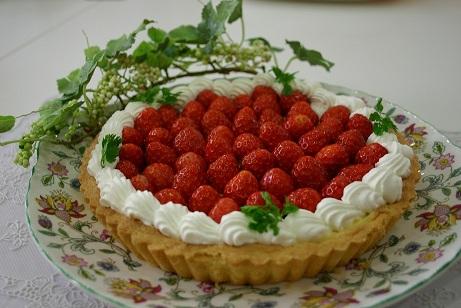 イチゴのタルトブログ