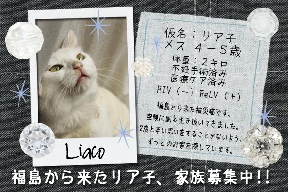 リア子ネームカード