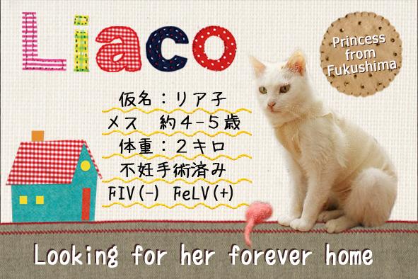 リア子ネームカード2