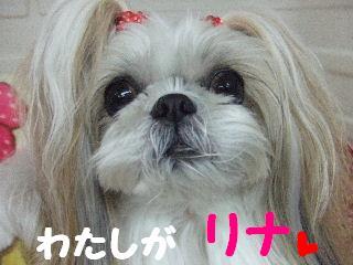 2010_02030121.jpg