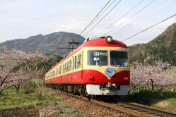 夜間瀬~上条間(2011.5.7)