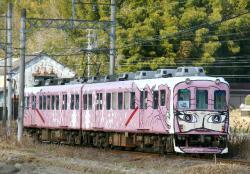 市部~猪田道間(2010.2.7)