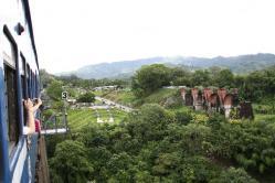 魚藤坪(龍騰)鉄橋(2011.7.16)