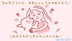 chataro_Card-06142011.jpg