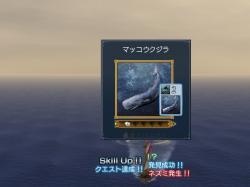 クジラ…カッコイイ…