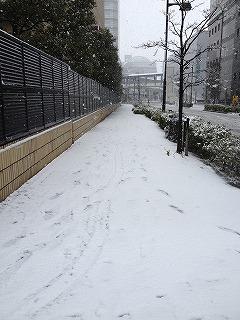 20120229-降雪