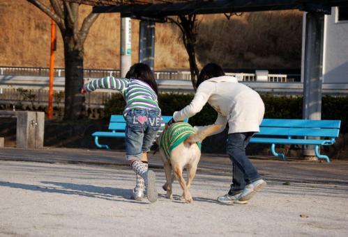 20100129sayamadani4.jpg
