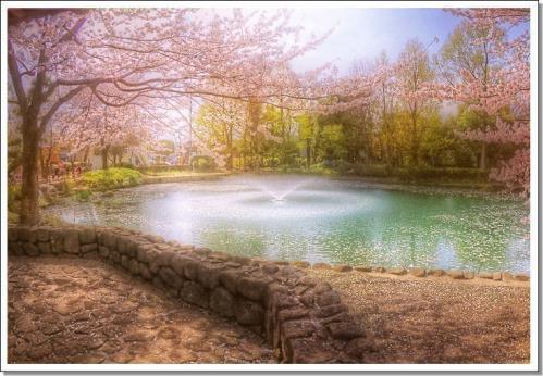 hdr20100410sayamaikea.jpg