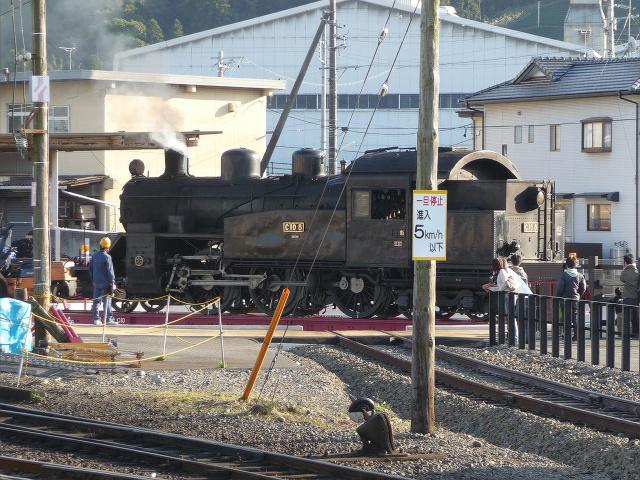 20111201-ooigawa11.jpg