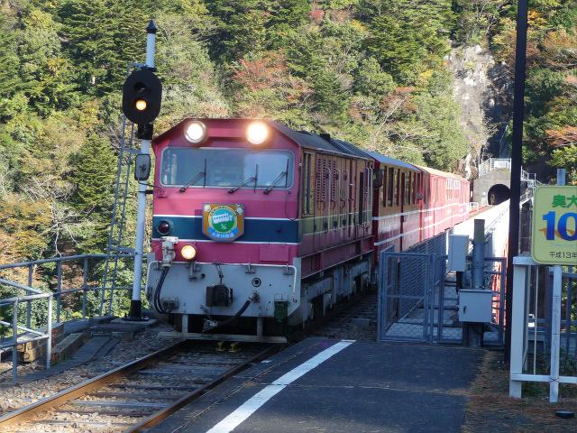 20111201-ooigawa4.jpg