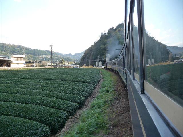 20111201-ooigawa6.jpg