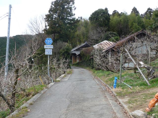20111231-3.jpg