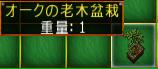2010429-008