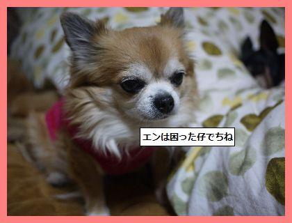 まいごちゃん4 (2)