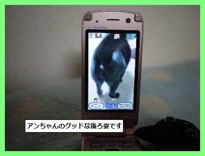 えがお2 (1)