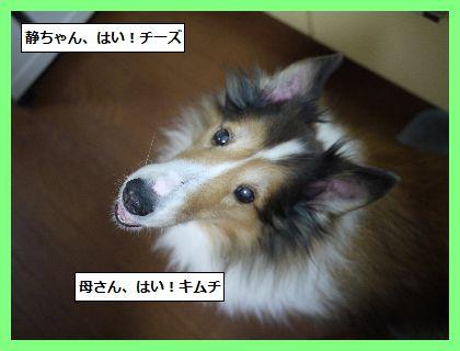 えがお4 (1)